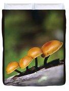 Mushrooms Growing On Log Duvet Cover