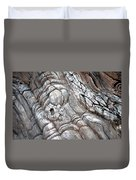 Natural Abstract 11 Duvet Cover