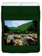 Natural Pangaea  Duvet Cover by Lj Lambert