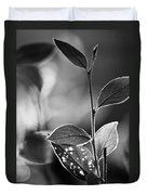 Natures Back Light Duvet Cover