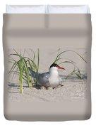 Nesting Common Tern Duvet Cover