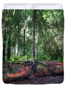 New Growth Duvet Cover by Anthony Jones