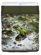 New Hampshire Frog Duvet Cover