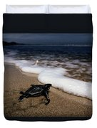 Newly Hatched Leatherback Turtle Duvet Cover