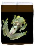 Northern Glassfrog Hyalinobatrachium Duvet Cover