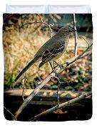 Northern Mockingbird On The Highline Duvet Cover