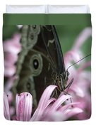 Northern Pearly-eye On Pink Duvet Cover