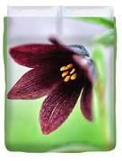 Northern Rice Root Fritillaria Duvet Cover