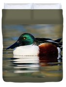 Northern Shoveler Anas Clypeata Male Duvet Cover