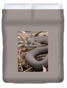 Northern Water Snake  Duvet Cover