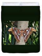 Not A Butterfly But An Atlas Moth Duvet Cover