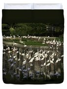 Number Of Flamingoes Inside The Jurong Bird Park In Singapore Duvet Cover