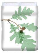 Oak Leaves, X-ray Duvet Cover
