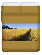 Oat Crops On A Landscape, County Dawn Duvet Cover