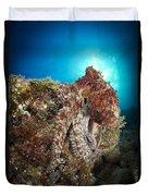 Octopus Posing On Reef, La Paz, Mexico Duvet Cover