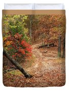 Old Country Road In Shannon County Duvet Cover