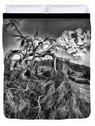 Old Desert Tree Duvet Cover