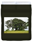 Old Fig Tree - Ficus Carica Duvet Cover by Kaye Menner