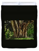 Old Fig Tree Duvet Cover by Kaye Menner