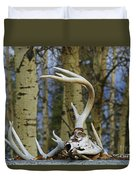 Old Skull And Antlers Duvet Cover