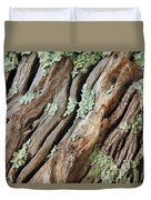 Old Wood And Lichen Duvet Cover