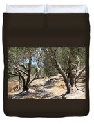 Olive Trees At Sebastia Duvet Cover