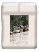 Olive Trees Standing Alone Duvet Cover