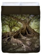 Ombu In Buenos Aires Duvet Cover