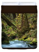 On The Banks Of Big Spring In The Missouri Ozarks Duvet Cover