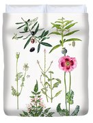 Opium Poppy And Other Plants  Duvet Cover by  Elizabeth Rice