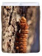 Orange Caterpillar Duvet Cover