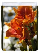Orange Day Lilies In The Sun Duvet Cover
