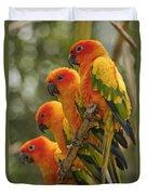 Orange Parakeets Chiang Mai Thailand Duvet Cover