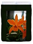 Orange Sherbert  Orchid Duvet Cover