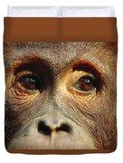 Orangutan Eyes Borneo Duvet Cover