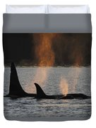 Orca Orcinus Orca Resident Pod Duvet Cover
