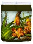 Orchid - Oncidium - Ripened   Duvet Cover