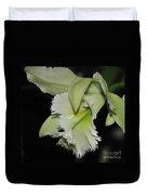 orchid 900 Brassolaeliocattleya Ruben's Verde Chantilly Green Duvet Cover