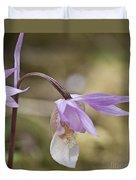 Orchid Calypso Bulbosa - 1 Duvet Cover