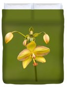 Orchid Number 1 Duvet Cover