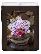 Orchid On Stack Of Rocks Duvet Cover