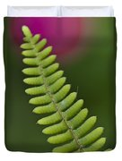 Ornamental Fern Duvet Cover