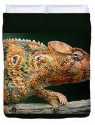 Oustalets Chameleon Furcifer Oustaleti Duvet Cover