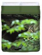 Owl In Woodland, Sachsische Schweiz Duvet Cover