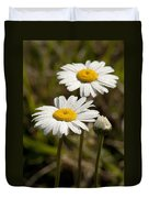 Ox-eye Daisy Wildflowers Drenched In Dew Duvet Cover