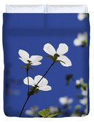 Pacific Dogwood Blossoms Cornus Duvet Cover