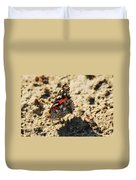 Painted Lady 8591 3341 Duvet Cover