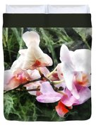 Pale Pink Phalaenopsis Orchids Duvet Cover