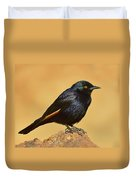 Pale-winged Starling Duvet Cover