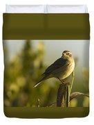 Palm Warbler, Everglades National Park Duvet Cover